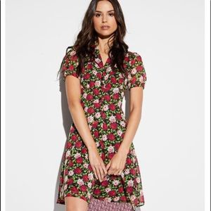 30% Off!! Betsey Johnson Roses Button-Front Dress